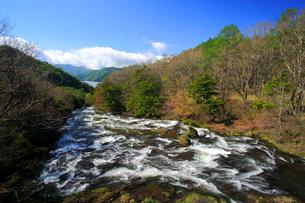 新緑の竜頭ノ滝と中禅寺湖の写真素材 [FYI03222673]