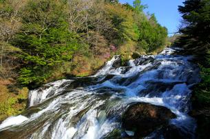 新緑の竜頭ノ滝の写真素材 [FYI03222681]
