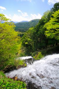 湯滝と新緑の奥日光の写真素材 [FYI03222715]