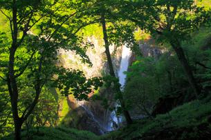 早朝の華厳ノ滝の写真素材 [FYI03222720]