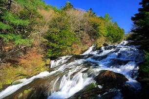 新緑の竜頭ノ滝の写真素材 [FYI03222734]
