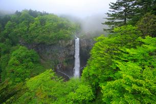 奥日光の新緑と華厳ノ滝の写真素材 [FYI03222738]