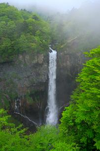 奥日光の新緑と華厳ノ滝の写真素材 [FYI03222745]