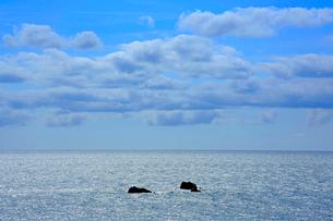 輝く海と雲の写真素材 [FYI03222882]