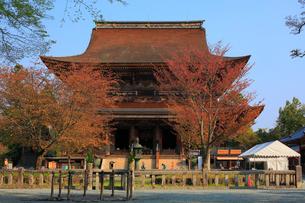 吉野山,金峯山寺,蔵王堂の写真素材 [FYI03223141]