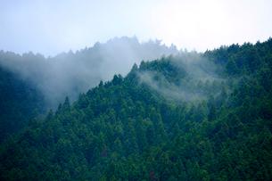 霧の山並みの写真素材 [FYI03223145]