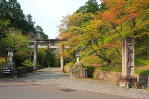 吉野山,新緑の吉野神宮の写真素材 [FYI03223151]