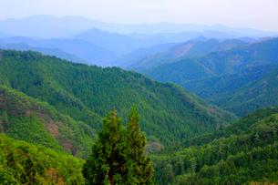 新緑の紀伊山地の写真素材 [FYI03223158]