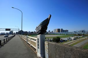 六郷橋の国道15号線と多摩川緑地の写真素材 [FYI03223168]