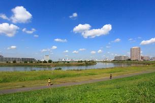 六郷土手の多摩川緑地と雲の写真素材 [FYI03223174]