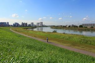 六郷土手の多摩川緑地と川崎市街の写真素材 [FYI03223176]