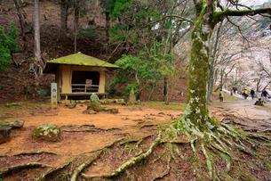 吉野山,奥千本の西行庵の写真素材 [FYI03223177]