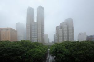 雨の東京都庁舎の写真素材 [FYI03223201]