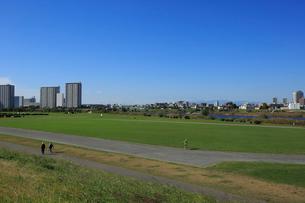 多摩川緑地と川崎市街の写真素材 [FYI03223210]