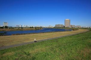 多摩川緑地と多摩川の写真素材 [FYI03223220]
