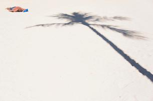 ヤシの影とビーチの写真素材 [FYI03223500]