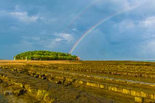 宮崎青島にかかる虹の写真素材 [FYI03224069]