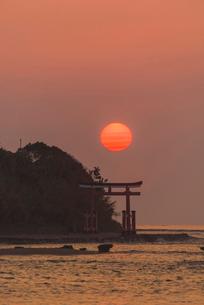 青島の日の出の写真素材 [FYI03224112]