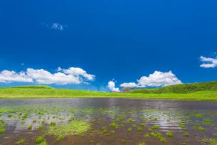 阿蘇草千里ヶ浜の写真素材 [FYI03224151]