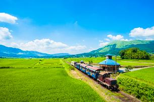 南阿蘇水の生まれる里白水高原駅のトロッコ列車の写真素材 [FYI03224159]