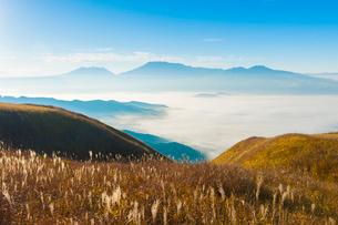 阿蘇の雲海とすすきの写真素材 [FYI03224167]