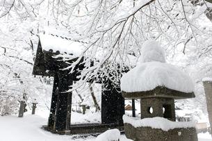 雪の秋月黒門の写真素材 [FYI03224178]