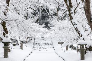 雪の秋月城址の写真素材 [FYI03224179]
