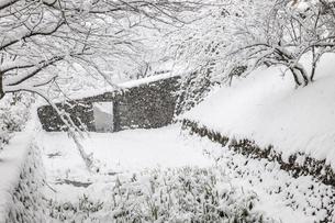 雪の秋月城址の写真素材 [FYI03224180]