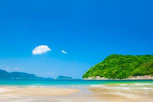 幸島と日南海岸の写真素材 [FYI03224185]