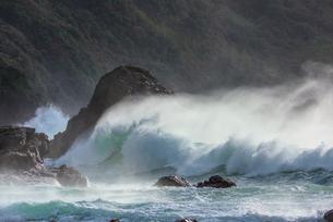 天草の大波の写真素材 [FYI03224202]