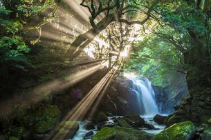 夫婦滝の光芒の写真素材 [FYI03224206]