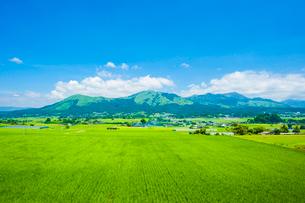 阿蘇五岳と水田の写真素材 [FYI03224219]