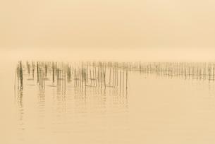 有明海の海苔田の写真素材 [FYI03224228]