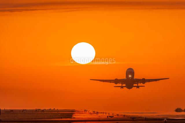熊本空港の夕日と飛行機の写真素材 [FYI03224246]