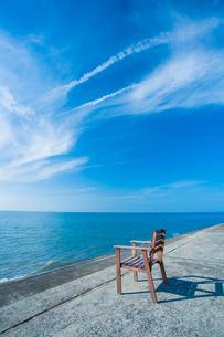 青空の真玉海岸の写真素材 [FYI03224263]