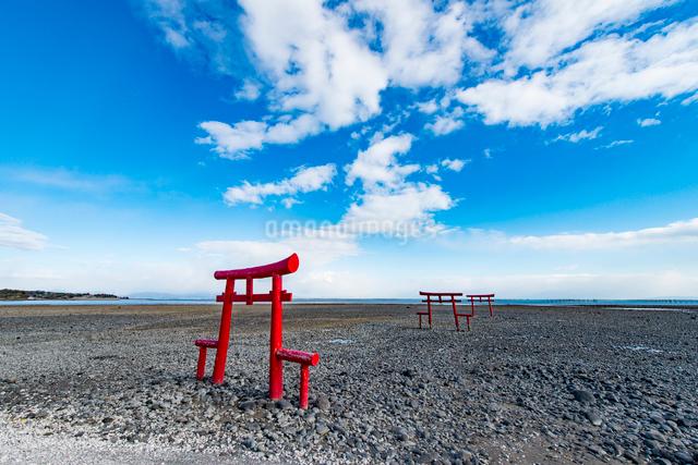 大魚神社の海中鳥居の写真素材 [FYI03224277]