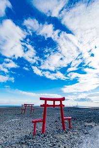 大魚神社の海中鳥居の写真素材 [FYI03224279]