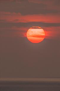 響灘に沈む夕日の写真素材 [FYI03224281]