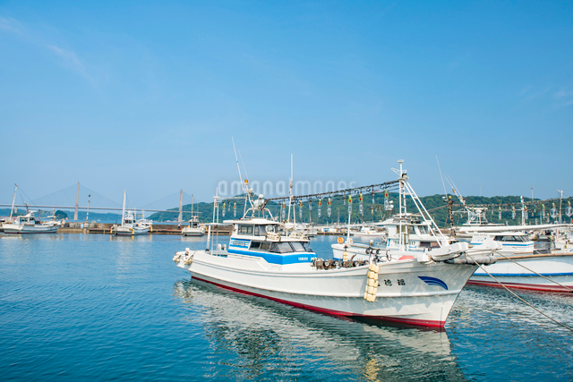 呼子港のイカ釣り漁船の写真素材 [FYI03224350]