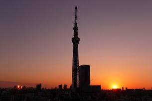 夕暮れの東京スカイツリーの写真素材 [FYI03224441]