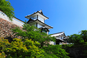 金沢城石川門の石川櫓と青空の写真素材 [FYI03224583]