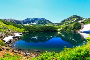 残雪と高山植物の花咲く立山室堂平よりミクリガ池に快晴の雄山の写真素材 [FYI03224597]