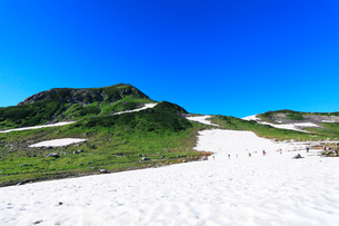 立山室堂平より快晴の浄土山と雪渓に登山者達の写真素材 [FYI03224600]