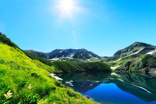 コバイケイソウ咲く立山室堂平よりミクリガ池に雄山と太陽の写真素材 [FYI03224605]