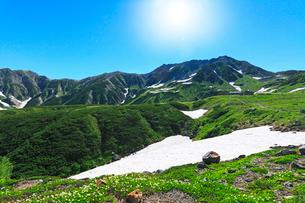 チングルマ咲く立山室堂平より雄山に残雪と太陽の写真素材 [FYI03224613]
