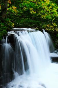 奥入瀬渓流 銚子大滝の写真素材 [FYI03224620]