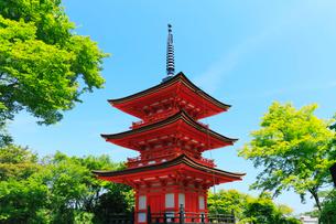 京都清水寺 子安塔の写真素材 [FYI03224666]