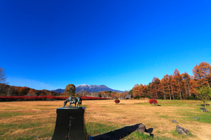 木曽馬の里,紅葉と快晴の御嶽山に噴煙の写真素材 [FYI03224682]