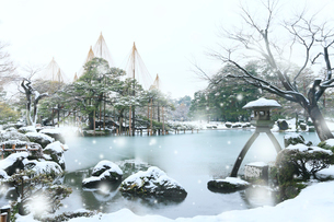 冬の北陸金沢,兼六園に降る雪の写真素材 [FYI03224724]