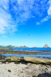 小笠原諸島父島・ジョンビーチより南島とカツオドリの写真素材 [FYI03224771]